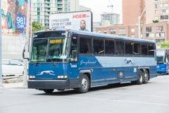 Charci autobusowy inToronto, Kanada Zdjęcie Royalty Free