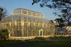 charcica Krajowi ogródy botaniczni dublin Irlandia zdjęcia stock