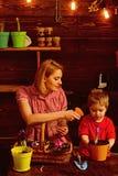 charcica matki i syna praca w szklarni szklarnia i ogrodnictwo ufne ogrodniczki w szklarni obrazy stock