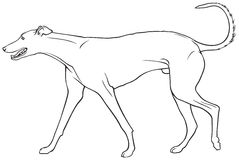 Charcica psa traken ilustracja wektor