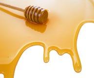 Charco de la miel Imágenes de archivo libres de regalías