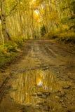 Charco de la montaña en las montañas de Colorado durante la temporada de otoño Fotos de archivo libres de regalías