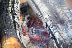 charcoal zdjęcie royalty free