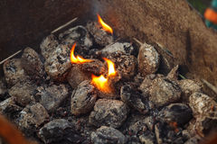 Charcoal briquettes ready for barbecue grill. Stock Photo