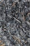 Charcoal. extinguished bonfire Stock Image
