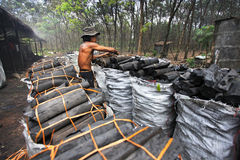Charcoal factory worker. NAKHON SI THAMMARAT, THAILAND - MAY 12 : Unidentified worker in a charcoal factory packs charcoals into plastic bags for shipment on May Stock Photography