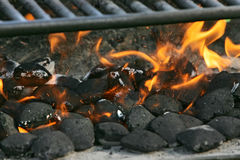 Charcoal on fire Royalty Free Stock Photo