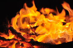 Charcoal fire. Royalty Free Stock Image
