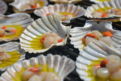 Charcoal-grilled scallop Royalty Free Stock Photography