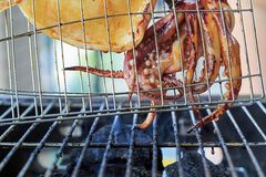 Of charcoal grilled squid Royalty Free Stock Photos
