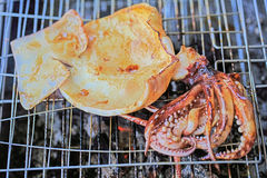 Of charcoal grilled squid Stock Image