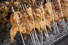 Charcoal Grilled whole Chicken Royalty Free Stock Photo