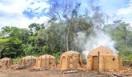 Agriculture .Eucalyptus farm in Minas Gerais , Brazil. Charcoal kilns on the eucalyptus farm in Minas Gerais , Brazil stock photos