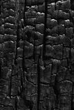 Charcoal Patterns Royalty Free Stock Images
