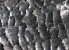 Charcoal texture. Black charcoal texture Royalty Free Stock Photography