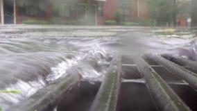Charcos de las fuertes lluvias y gotas de agua y ondulaciones en el camino superficial - fondos naturales de las gotas de agua de almacen de metraje de vídeo