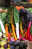 Chard Stock Images