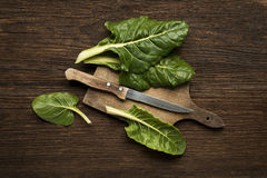 Chard. Fresh swiss chard leaves on a wooden background royalty free stock images