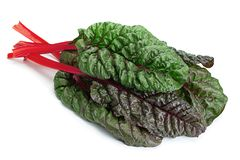 Chard leaf closeup royalty free stock photos