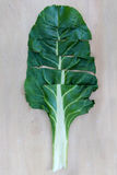 Chard Leaf Royalty Free Stock Image