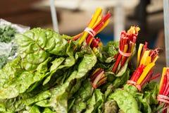 Chard Lettuce At Farmers Market Royalty Free Stock Photos