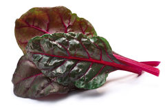 Chard silverbeet, mangold leaves, paths Stock Images