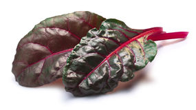 Chard silverbeet, mangold leaves, paths Royalty Free Stock Image