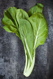 Chard on Slate Overhead View Stock Image