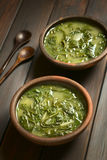 Chard Soup Stock Image