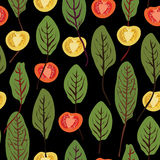 Chard and tomatoes, seamless vector pattern Royalty Free Stock Photography