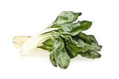 Chard On White Background Royalty Free Stock Photography
