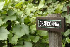 Chardonnay sign Stock Photo