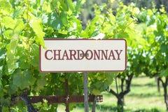 Chardonnay-Trauben-Zeichen stockfotografie