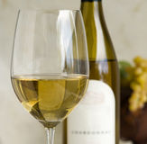 Chardonnay wine Royalty Free Stock Images