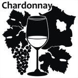 chardonnay wino francuski szklany biały ilustracji