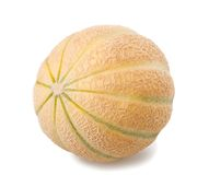 Charentais melon Royalty Free Stock Photos