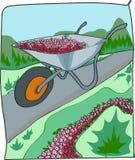 Charette à bras avec des fleurs Photographie stock