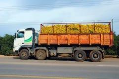 Charge de camion des oranges photo libre de droits