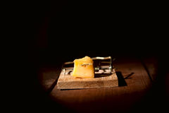 Charged mousetrap cheese Stock Photo