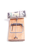 Charged mousetrap with five dollar banknote Royalty Free Stock Images