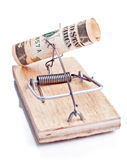 Charged mousetrap with five dollar banknote Stock Photography