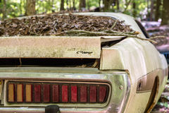Free Charger Taillight Royalty Free Stock Photography - 61013947