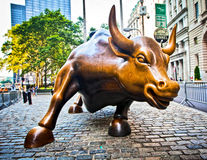 Charging Bull Royalty Free Stock Photography