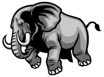 Charging elephant. Vector of charging angry elephant royalty free illustration