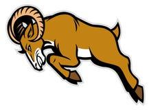 Charging ram mascot Stock Image