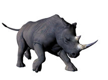 Charging Rhino. An African Rhinoceros Charges off the page.  Computer Generated Image, 3D models Stock Images