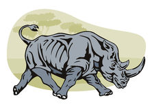 Charging rhinoceros Stock Image