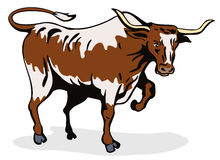 Charging texas longhorn bull Royalty Free Stock Photo