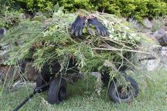 Chariot à jardin Photos libres de droits