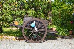 Chariot à roues par deux Photo libre de droits